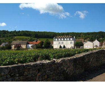 Chateau de la Maltroye - Bourgogne
